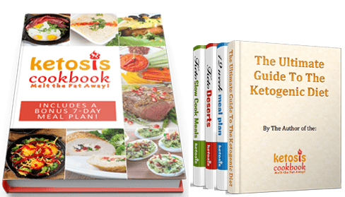 ketosis cookbook melt the fat away all books and bonuses